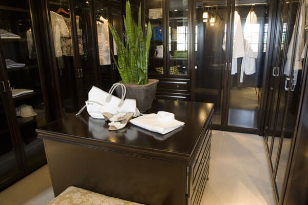 glass cabinet closets